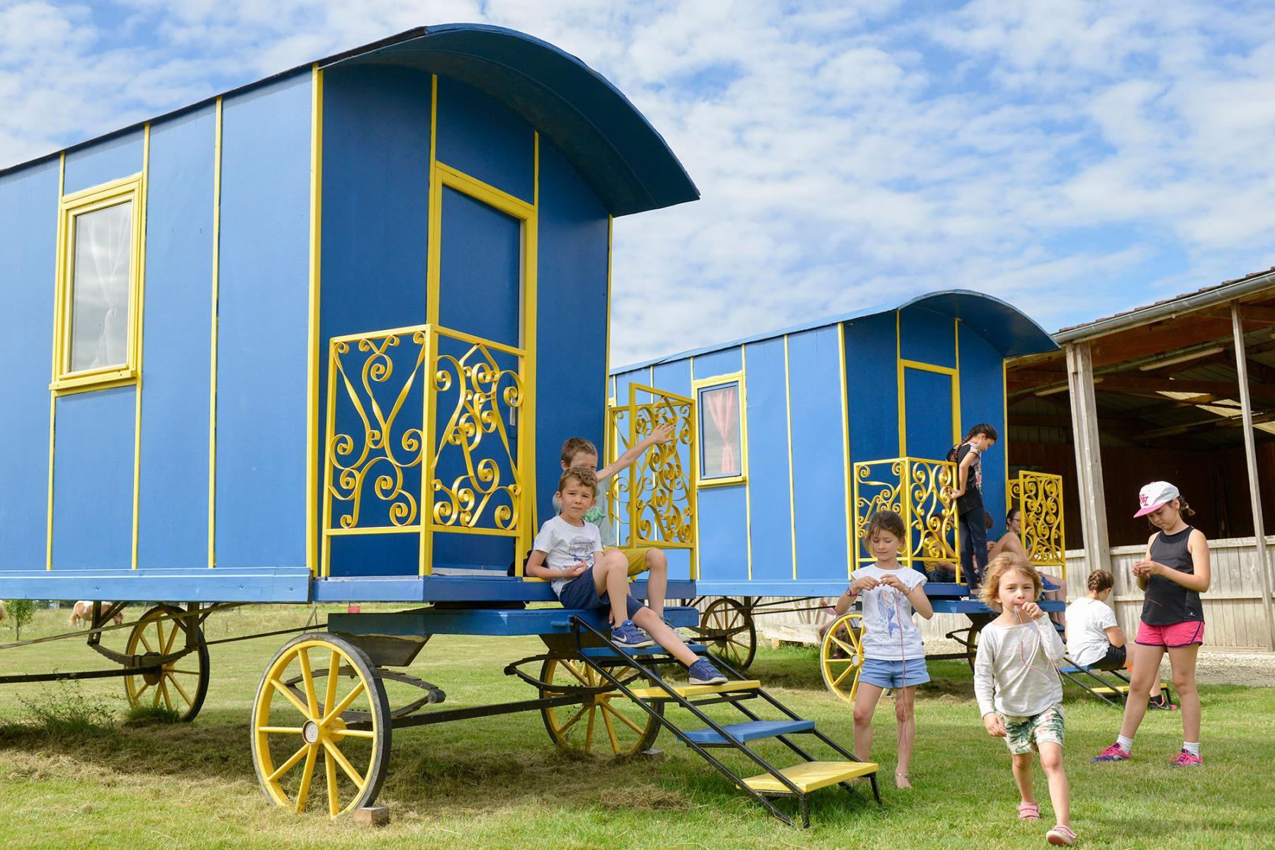classe decouverte yonne  cirque equestre de cocico  spectacle  centre de vacances